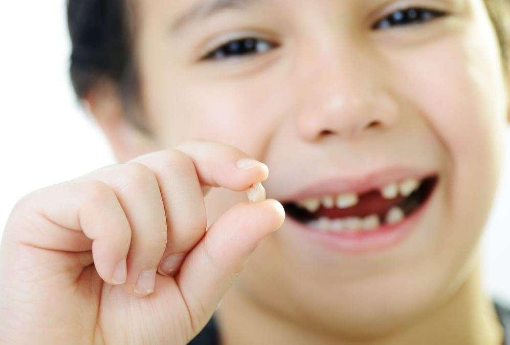 ترتيب ظهور الأسنان الدائمة